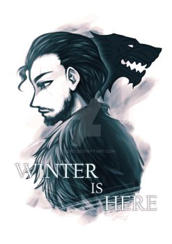 Winter is Here by Evo917