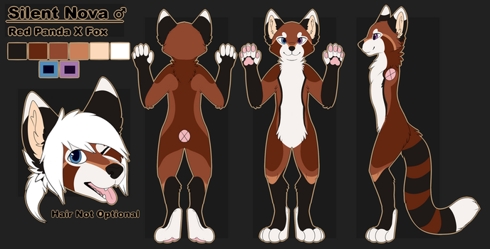 Silent Ref sheet by Chargay