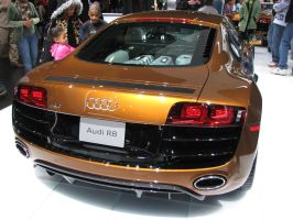 Audi R8 5.2 V10 FSI -2 by Big-D-pictures