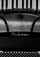 Hohner by DeeMelino