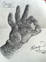 Hands by rgopal