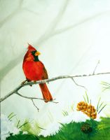 Cardinal by TWStatonGallery
