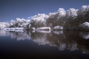 IR Lake by vw1956stock