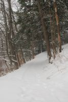 Snowy Path 2 by Green-Ocean-Stock