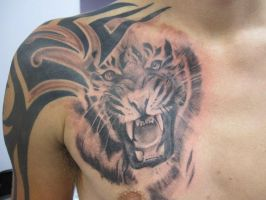 tiger chest tattoo by jamierees