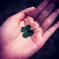 Clovers by ThousandEchoes
