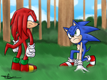 Sonic Vs. Knuckles by ProSonic