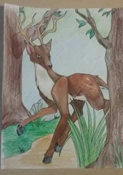 Deer in a forest by Geckogirl315