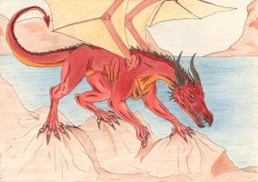 Dragon :D collored by karovie