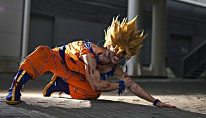Goku cosplay .:never surrender:. by Alexcloudsquall