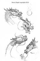 Oriental dragon studies by Baron-Engel