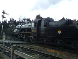 Flying Pig Ivatt 2MT by Cavyman