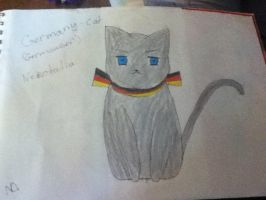 Germany cat by twx655
