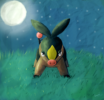 Pokabu -Midnight Meadow- by Lauzi