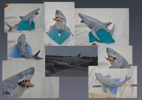 Zoo Tycoon Paper Collection - Great White Shark by DrWheelieMobile