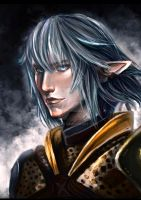 Haurchefant Fortemps - FF XIV by Sileina