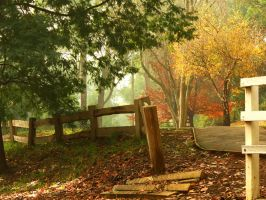 Foggy Autumn Stock by blaisedrew62