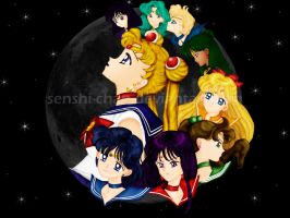 3Dish Sailor Moon Wallpaper by Senshi-chan
