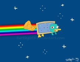 Nyan Platypus by Turtlegirl5