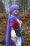 Will you accept this rose from me? by Milchwoman