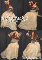 Bride Pack2 DelightfulStock by DelightfulStock