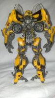 full back shot of Bumble bee by TribalBunny13