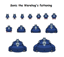 Sonic the Werehog's fattening by Effra-Bulbizarre