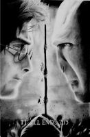 It All Ends -- Harry Potter vs Voldemort by ShadowDemon-08