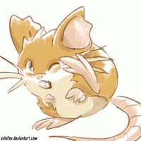 Raticate by ErinFox