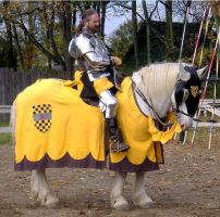 A Knight and His Steed by mistresskristinphoto
