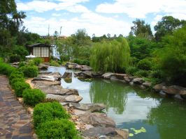 Japanese Gardens in Bundaberg by droy333