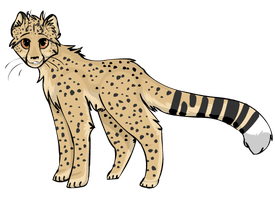 Cheetah by StarryEvening