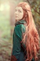 Captain of the Woodland Guard by sistersmischief