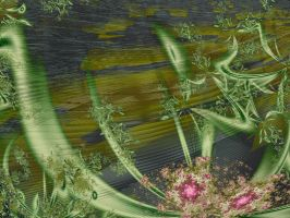 Underwater Plants with ... by ArtistInWaiting