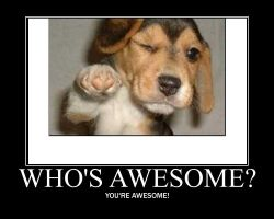 Who's awesome? by Mahnnuh