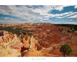 Bryce_Canyon by e1david