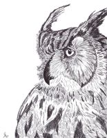 Horned Owl by Lonewolf521