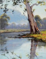 Valley Gum Tree by artsaus