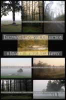 Exclusive Landscape Pack by lindowyn-stock