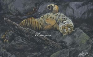 Untitled - Tigers by Noukah