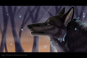 Nightfall by HeatherWolf