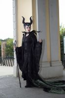 Maleficent17 by Valerie-Mrosek-Stock