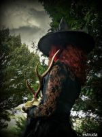 What Is The Witch Up To by Estruda