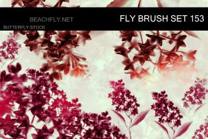butterfly-stock_brush set 153 by butterfly-stock