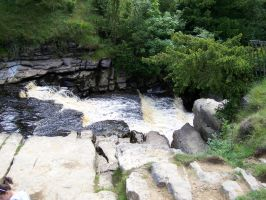 top of thornton force by stealth49