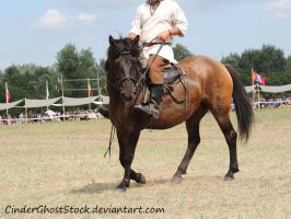 Hungarian Festival Stock 111 by CinderGhostStock