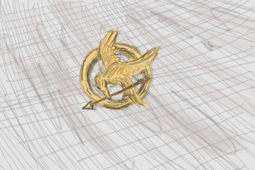 Mockingjay pin by auburn123