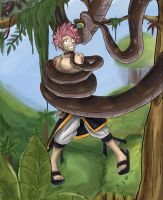 Natsu's Serious Mistake by jdashe