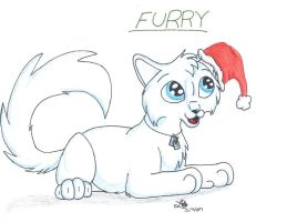 x-mas gift for Furry by BlueLumi