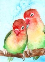 ACEO (ATC) Lovebirds by FuzzyMaro